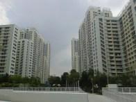 Panorama of the HDB flats. Общий обзор - вид на многоэтажки.